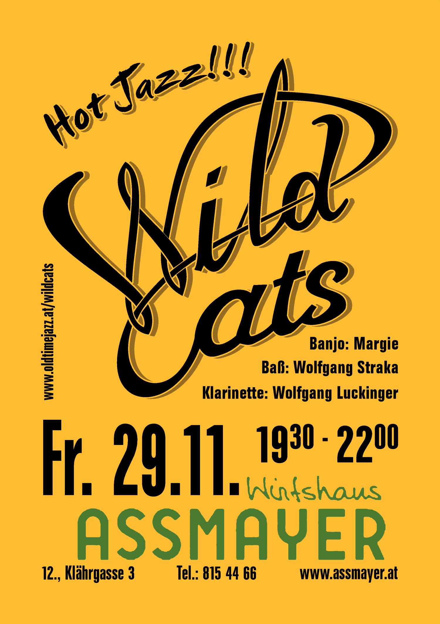 Wild Cats - Hot Jazz!!!
